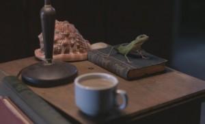 Death_in_Paradise__Meet_Harry_the_Lizard