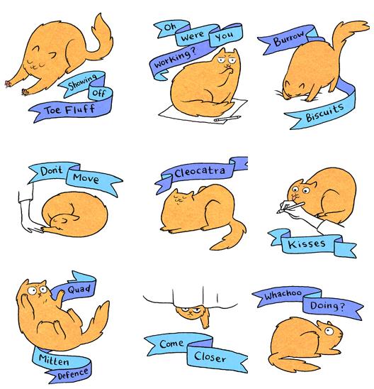 cat-position-cartoon