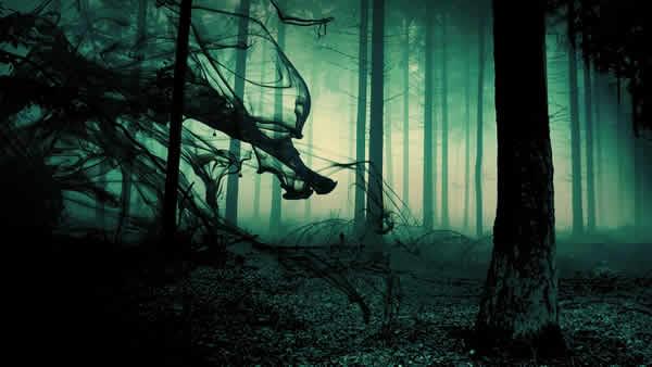 scary-horror-wallpaper-trees30
